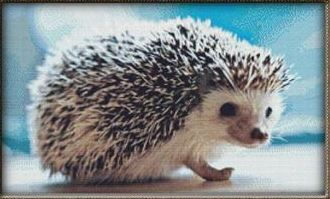 click here to view larger image of Hedgehog (chart)