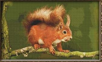 click here to view larger image of Bushy-Tailed Squirrel (chart)