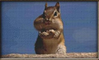 click here to view larger image of Chipmunk With Peanut (chart)