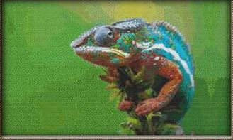 click here to view larger image of Bright Chameleon (chart)
