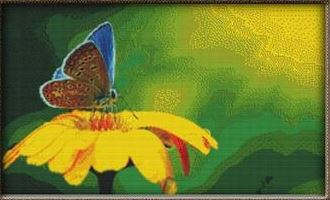 click here to view larger image of Blue Butterfly on Yellow Flowers (chart)