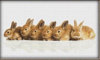click here to view larger image of Row of Bunnies (chart)