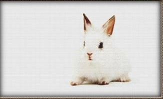 click here to view larger image of Cute White Bunny (chart)