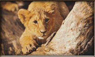 click here to view larger image of Playful Lion Cub (chart)