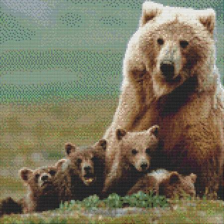 click here to view larger image of Bear Family (chart)