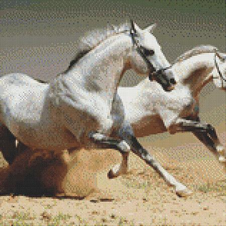 click here to view larger image of Two White Stallions (chart)