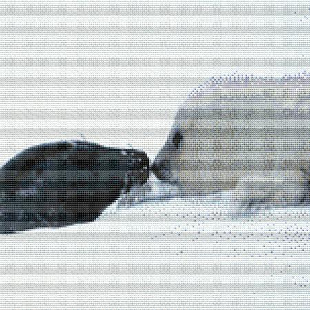 click here to view larger image of Cute Baby Seals (chart)