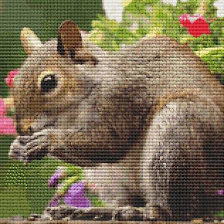 click here to view larger image of Cute Squirrel (chart)