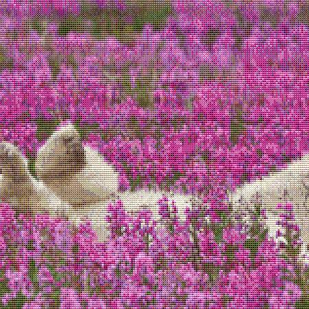 click here to view larger image of Flower Field Polar  Bear (chart)