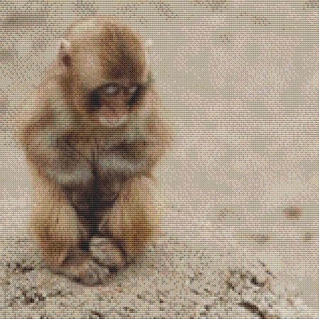 click here to view larger image of Cute Baby Monkey (chart)
