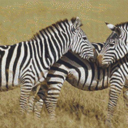 click here to view larger image of Zebra Pack (chart)