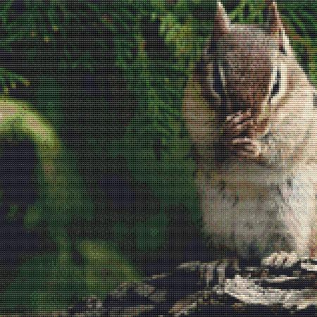 click here to view larger image of Cute Munching Chipmunk (chart)