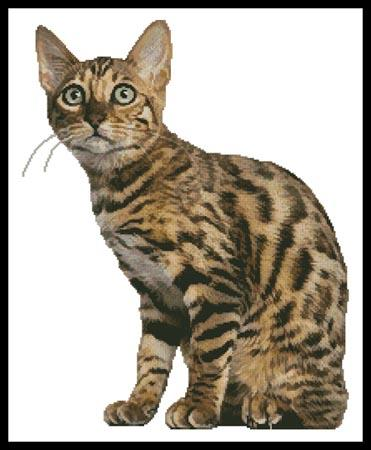 click here to view larger image of Bengal Cat (chart)