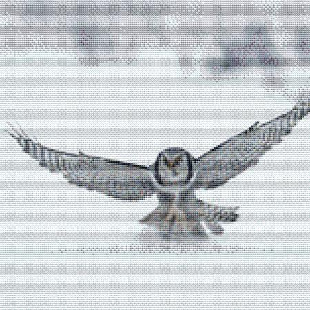 click here to view larger image of Flying Snow Owl (chart)