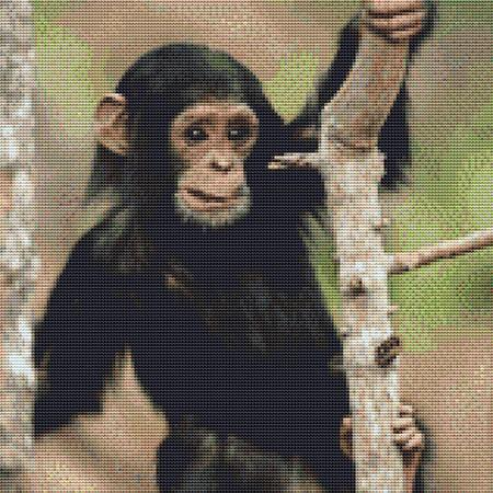 click here to view larger image of Cute Baby Chimp (chart)