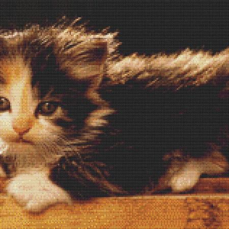 click here to view larger image of Adorable Calico Kitten (chart)