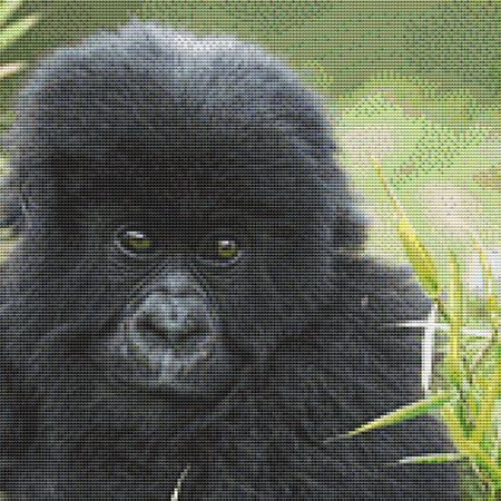 click here to view larger image of Cute Baby Gorilla (chart)