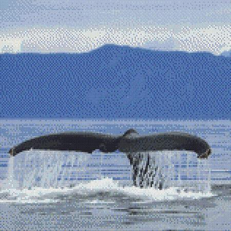 click here to view larger image of Whale of a Tail (chart)