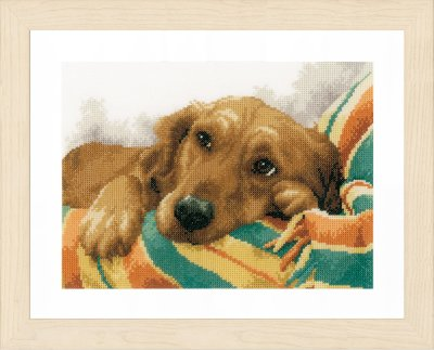 Little Rascal - Linen - click here for more details about counted cross stitch kit