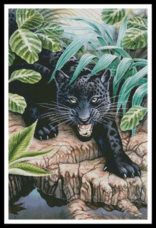 click here to view larger image of Black Panther In The Jungle (chart)