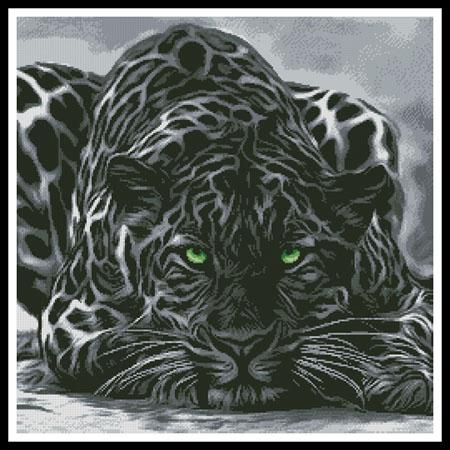 click here to view larger image of Black Leopard (chart)
