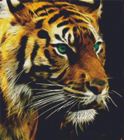 click here to view larger image of Green Eyed Tiger (chart)