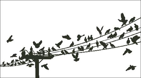 click here to view larger image of Birds On A Wire (chart)