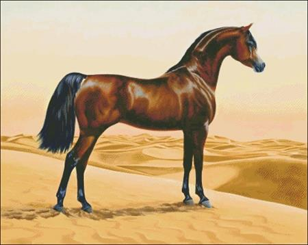 click here to view larger image of Arab Horse (chart)