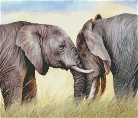 click here to view larger image of African Elephants Playing (chart)