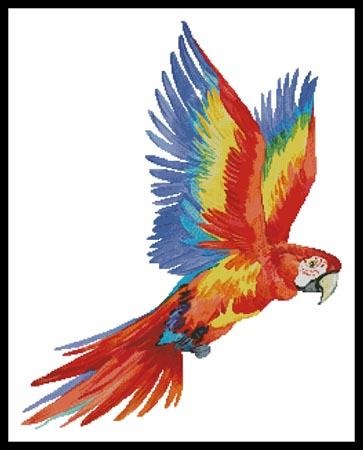 click here to view larger image of Colourful Macaw  (Lena Faenkova) (chart)