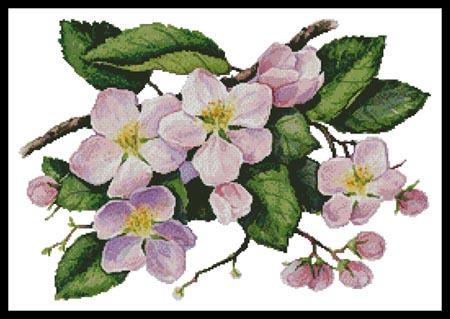 click here to view larger image of Apple Blossoms Painting (chart)