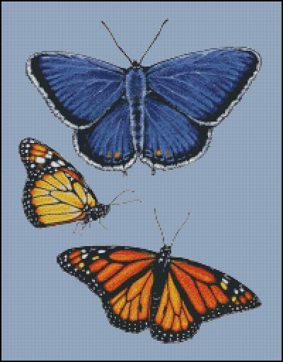 click here to view larger image of Eastern Blue and Monarch Butterfly (chart)