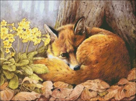 click here to view larger image of Forest Fox (chart)