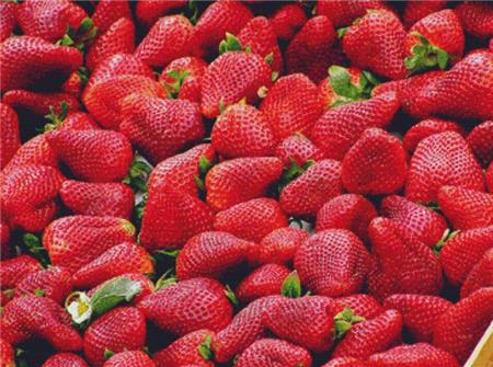 click here to view larger image of Juicy Strawberries (chart)