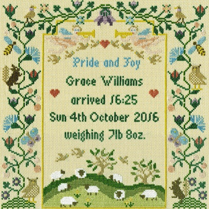 click here to view larger image of Pride And Joy (counted cross stitch kit)