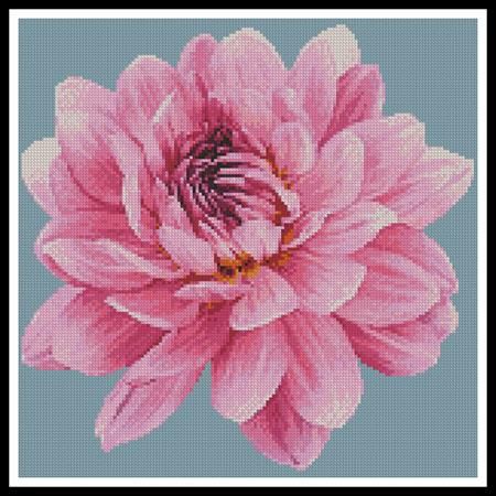 click here to view larger image of Mini Dahlia (chart)