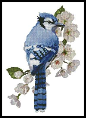 click here to view larger image of Little Blue Jay (chart)