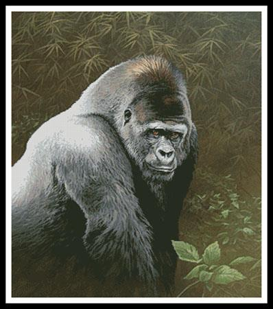 click here to view larger image of Great Ape (chart)