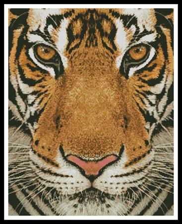 click here to view larger image of Bengal Tiger (Color) (chart)