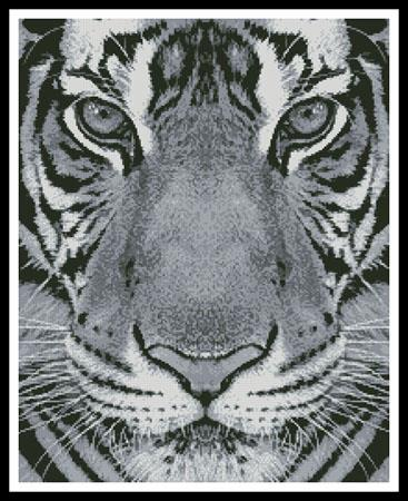 click here to view larger image of Bengal Tiger (Black and White) (chart)
