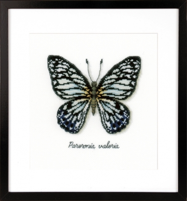 click here to view larger image of Blue Butterfly (counted cross stitch kit)