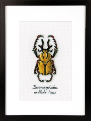 click here to view larger image of Golden Beetle (counted cross stitch kit)