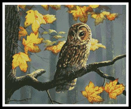 click here to view larger image of Tawny Owl (Crop) (chart)