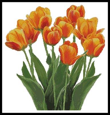 click here to view larger image of Orange Tulips (chart)