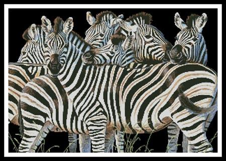 click here to view larger image of Zebra Huddle (chart)