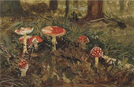 click here to view larger image of Amanita (chart)
