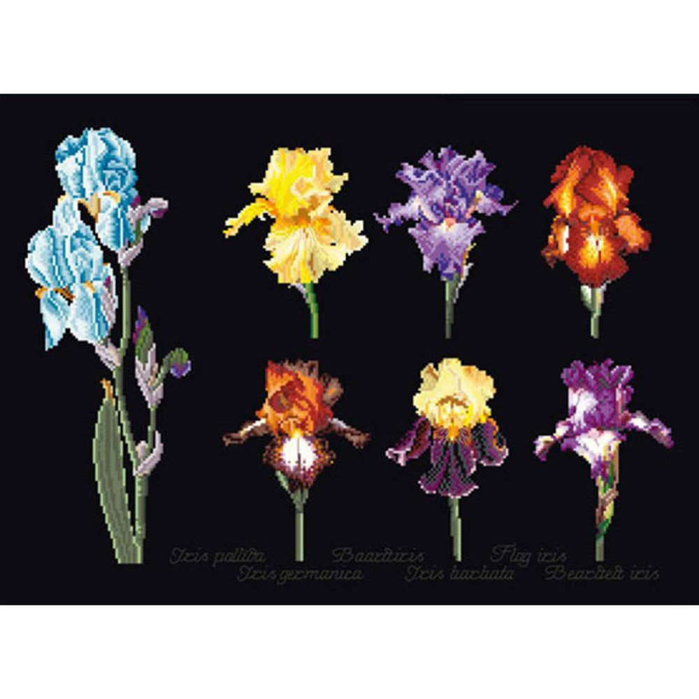 click here to view larger image of Iris Assortment - On Black (counted cross stitch kit)