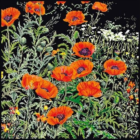 click here to view larger image of Orange Poppies - On Black (counted cross stitch kit)