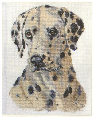 click here to view larger image of Dalmation (counted cross stitch kit)
