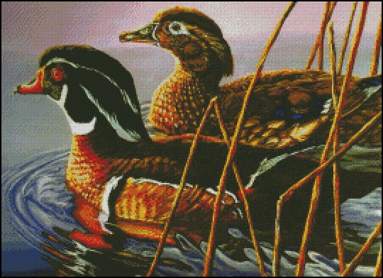 click here to view larger image of 2 Beautiful Wood Ducks (chart)
